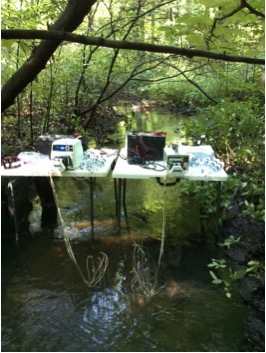 Sampling a first-order stream (Smith Creek) in the Augusta Creek watershed during the August 2015 synoptic sampling campaign. Photo Credit: Sydney Ruhala