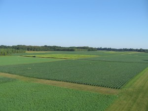 An aerial view of the KBS LTER Main Cropping Systems Experiment in southwest Michigan; photo credit: GP Robertson/KBS-MSU