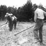Hoes to Herbicides: Reflecting on the last century of weed control and preparing for the next