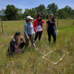 Cedar Creek graduate student, Cristy Portales with some undergraduate students in the field
